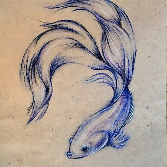 Blue Angel Siamese Fighting Fish Oil Pastel On Paper Drawing Fish Drawings Oil Pastel Drawings Fish Painting