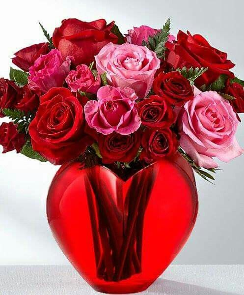 Pin By Katarzyna Kostecka On Red Beautiful Flowers Images Ftd Flowers Valentines Flowers