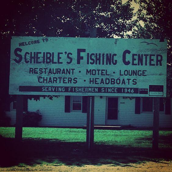 Scheible's