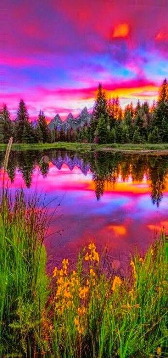 Colored nature