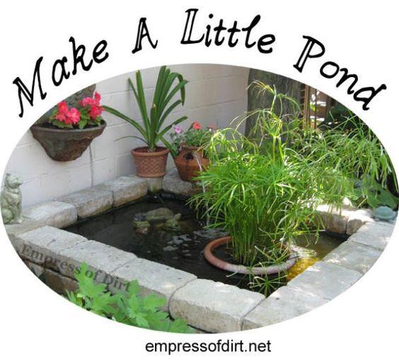 Advice for starting a new garden pond gardens little for Garden pond advice