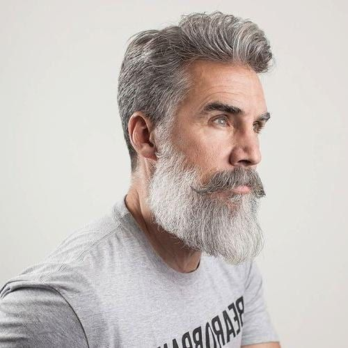 42 Hairstyles For Men With Silver And Grey Hair Men Hairstyles World Grey Hair Men Older Mens Hairstyles Curly Hair Men