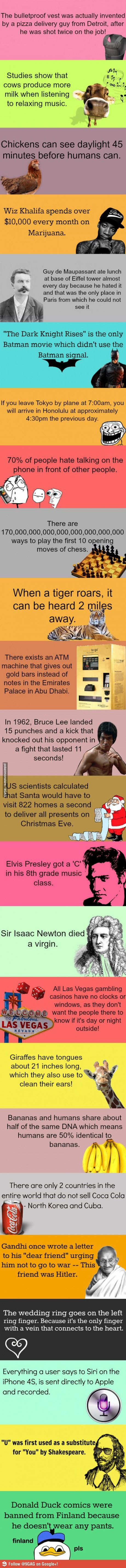 Random Facts wayyyy cool!!!!!!!!!!