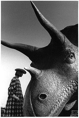 Week-end dino. #gros #triceratops
