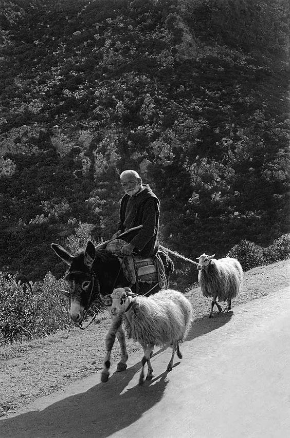 Η Κρήτη του 1955 μέσα από 36 ασπρόμαυρες φωτογραφίες του Αυστριακού φωτογράφου…