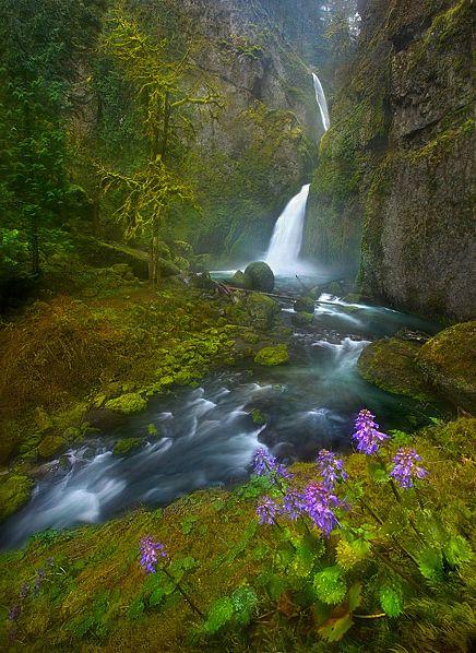 Columbia River gorge waterfall, Oregon by Marc Adamus