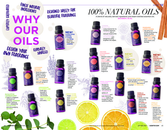 SCENTSY FALL & WINTER 2016 NATURAL OILS. Available September 1st! To order go to http://CWHITEAKER.SCENTSY.US