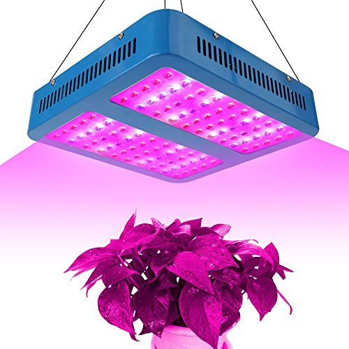 Cheap Derlights 1000w Double Chips Led Grow Light Full Specturm Grow Lamp For Greenhouse Hydroponic Indoor Plants Veg And Flower 1000w Hydroponic Grow Systems Led Grow Lights Hydroponics