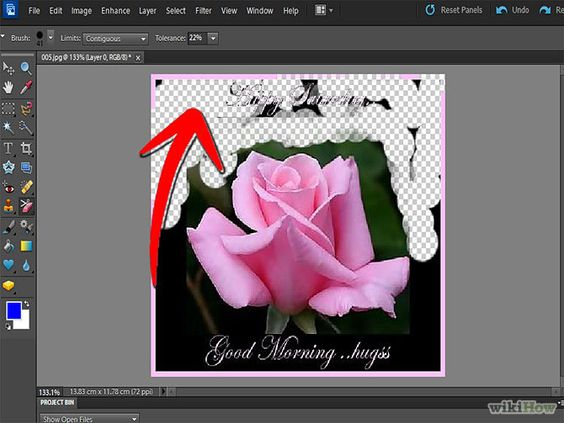 Remove Background With Photoshop Elements Step 7.jpg