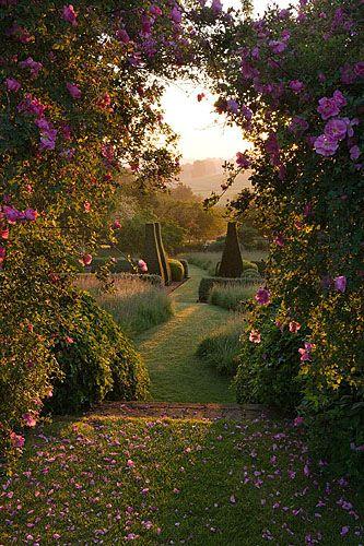 42722 In 2020 Garden Photography Beautiful Gardens Magical Garden