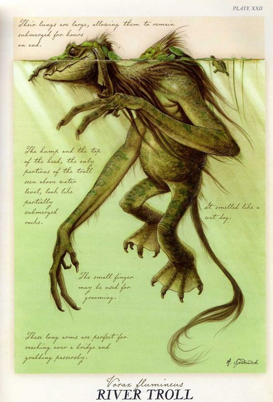 """River Troll"" from ""Arthur Spiderwick's Field Guide to the Fantastical World Around You"" illustration by Tony DiTerlizzi.:"