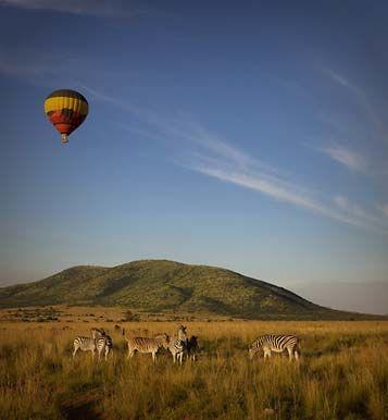 an African Safari Experience!!