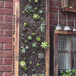 Vertical Planter: Awesomeidea Gardening, Outdoor Ideas, Garden Ideas, Greenhouse Gardening Ideas, Vertical Garden, Succulent Planters