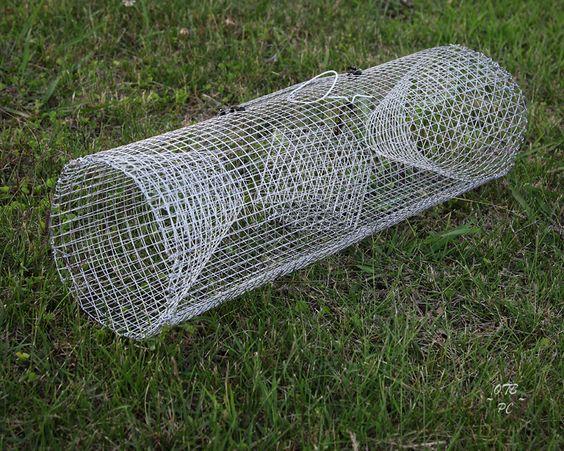 Best Crawfish Trap Design