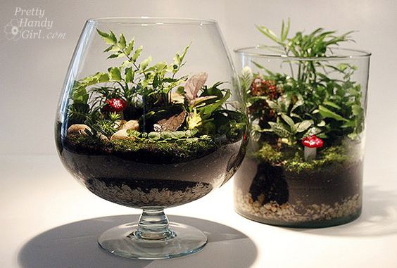 25 Ideas for Tabletop Gardens and Terrariums