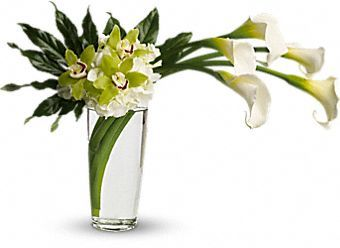 Moondance - Five large calla lilies are arranged with white hydrangea, bright green cymbidium orchids, and deep green aralia leaves in a tall pint vase.:
