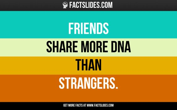 Friends  share more DNA than strangers.