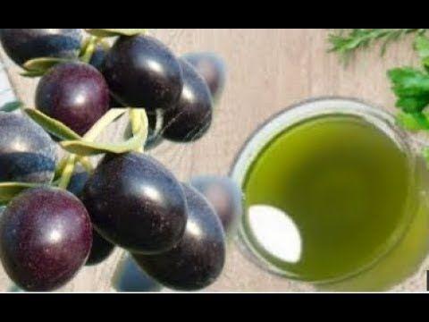 Youtube Fruit Plum Olive