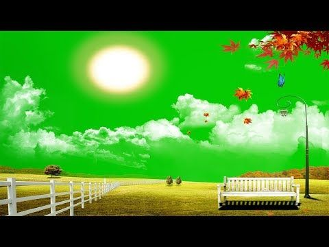 Beautiful Garden Natural Scene Green Screen Background Garden Chromakey Background Vfx Footage Youtub Greenscreen Frame Download Green Screen Backgrounds