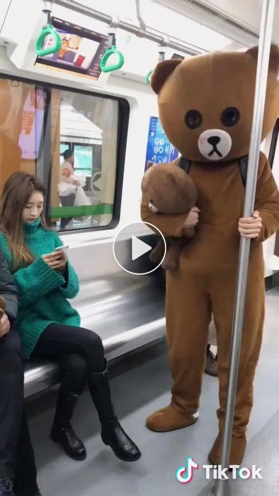Ursinho fazendo gracinha no ônibus