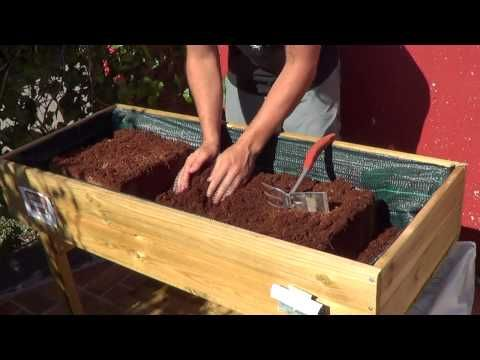 Como preparar la mesa de cultivo huerto urbano la for Cultivo pimiento huerto urbano