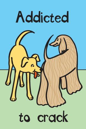 Addicted to Crack Rawhide Greeting Card for Dogs *** Visit the image link more details.