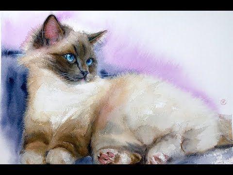 Cat Painting Tutorial In Watercolor Watercolor Paintings Of