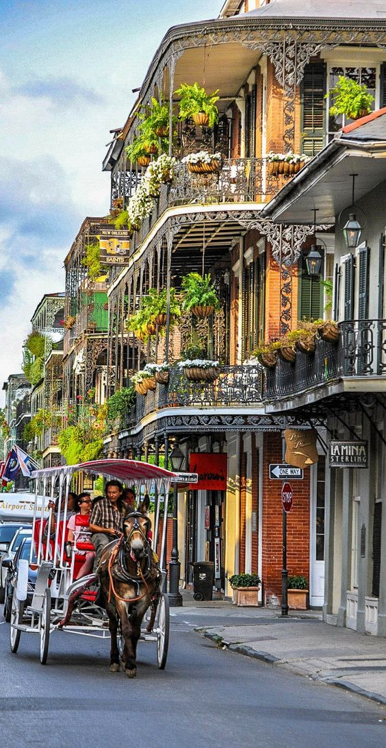Click through to see the top 10 things to do in New Orleans. (Besides drunken…