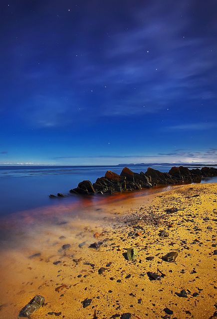 Moonlit Beach, by Stewart Watt.