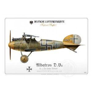 Albatros D.Va Ltn. Weiland 1918 BH-21