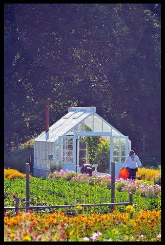 rosendals trädgård - stockholm