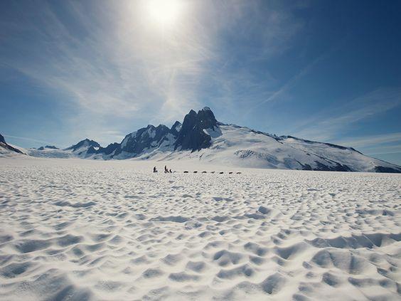 Unleash your inner explorer. Dogsledding in Alaska.