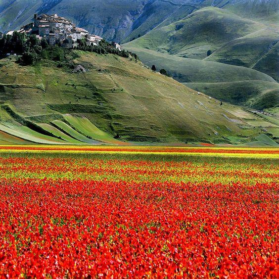 Castelluccio, Umbria, Italy