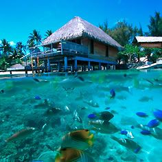 Hotel Bora Bora - Luxury beach resort Tahiti - water sports