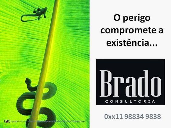 PRODUTOS E SERVIÇOS DA BRADO ASSOCIADOS: ANÁLISES DE RISCOS PROFISSIONAIS COM BASE NA METOD...