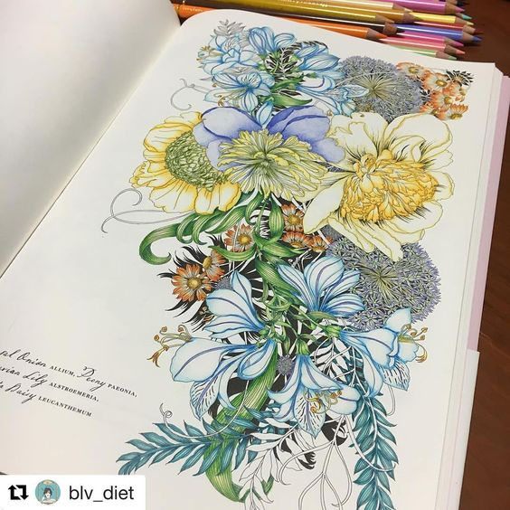 Sieh dir dieses Instagram-Foto von @adultcoloringforum an • Gefällt 140 Mal
