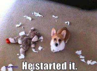 Soooo Timber :)