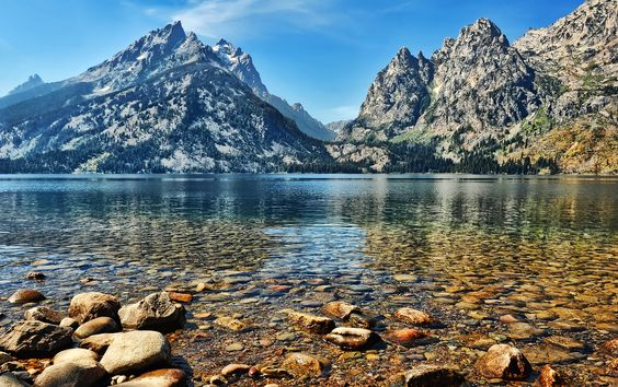I stayed in a cabin beside this lake, and wet a fly line a time or two.  -  Jenny Lake, Wyoming