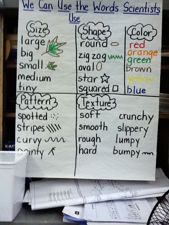 Understanding the Use of Descriptive Writing