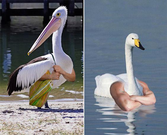 24 εντυπωσιακές φωτογραφίες που μόνο το photoshop και πολύ φαντασία μπορεί να δώσει