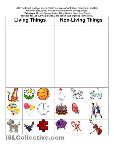 Living and Non-Living Things Worksheets | living and non living ...
