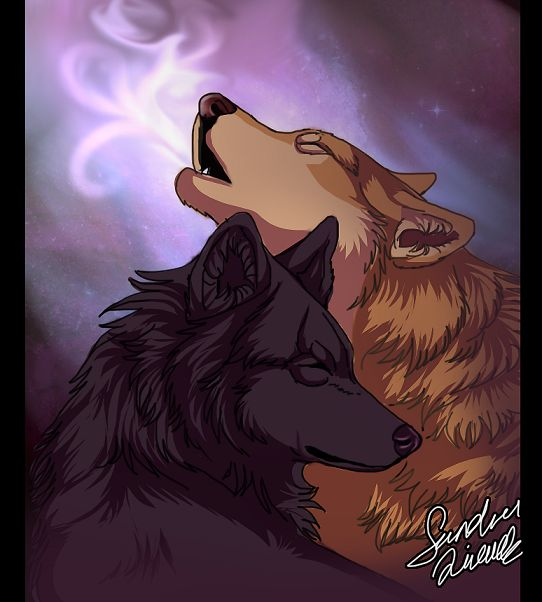 Wolves in love by SilverBabyWolf on DeviantArt  Two Wolves In Love Anime