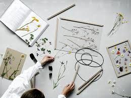 Bildergebnis für herbarium gestalten