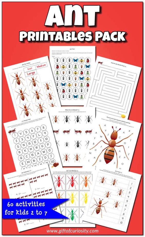 ants printables and activities for kids on pinterest