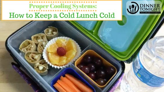 How To Keep A Cold Lunch Cold Cold Lunches Dinner Tonight Kid