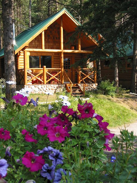 A sweet little cabin in the spring