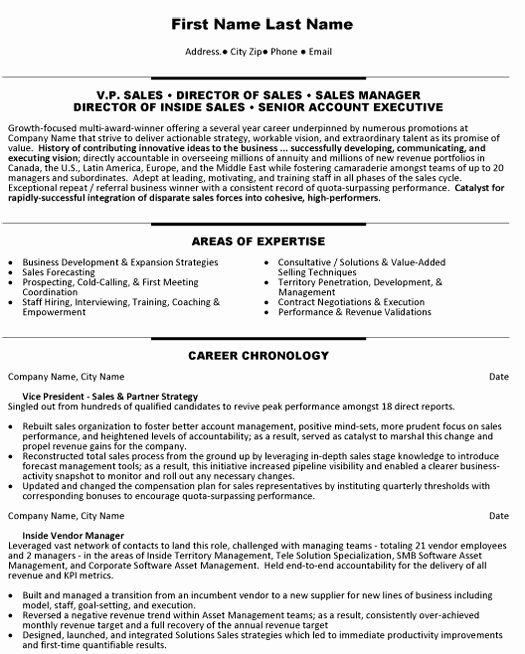 Accounting Executive Resume Samples Best Of Sales Account Executive Resume Sample Template In 2020 Sales Resume Examples Resume Examples Sales Resume