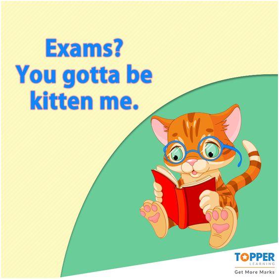 #Funny #Exams #Puns
