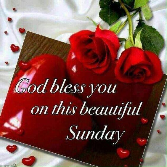 Beautiful Sunday Rose Quote sunday sunday quotes sunday blessings sunday images god bless sunday quotes sunday blessing images