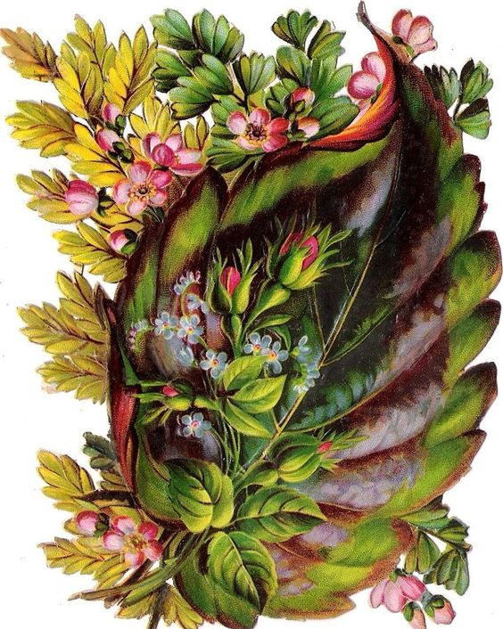 Oblaten Glanzbild scrap die cut chromo Blatt  XL 15cm leaf Rose Vergissmeinnicht: